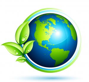 10 passos para um dia-a-dia mais ecológico